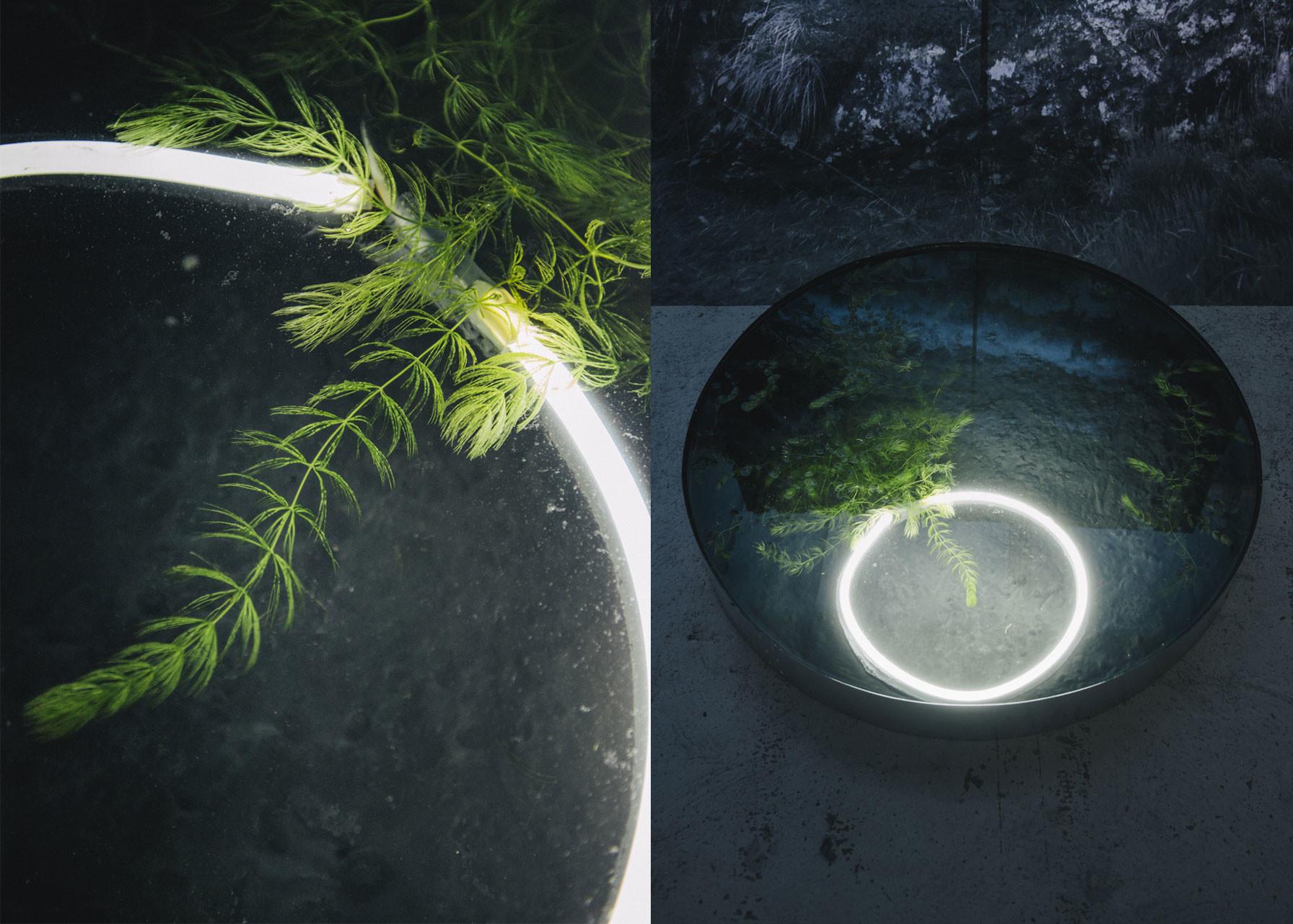 Eclipse - Premier contact - © Bigtime.