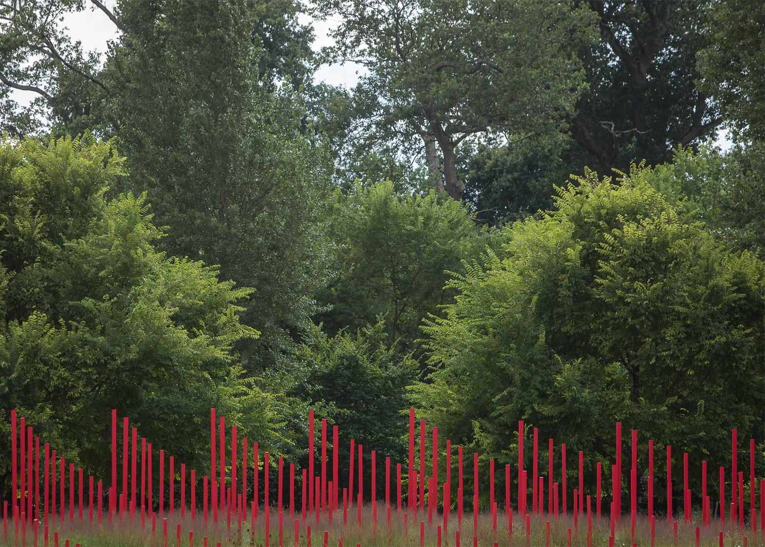 Le Jardin d'Ivresse - © Bigtime.
