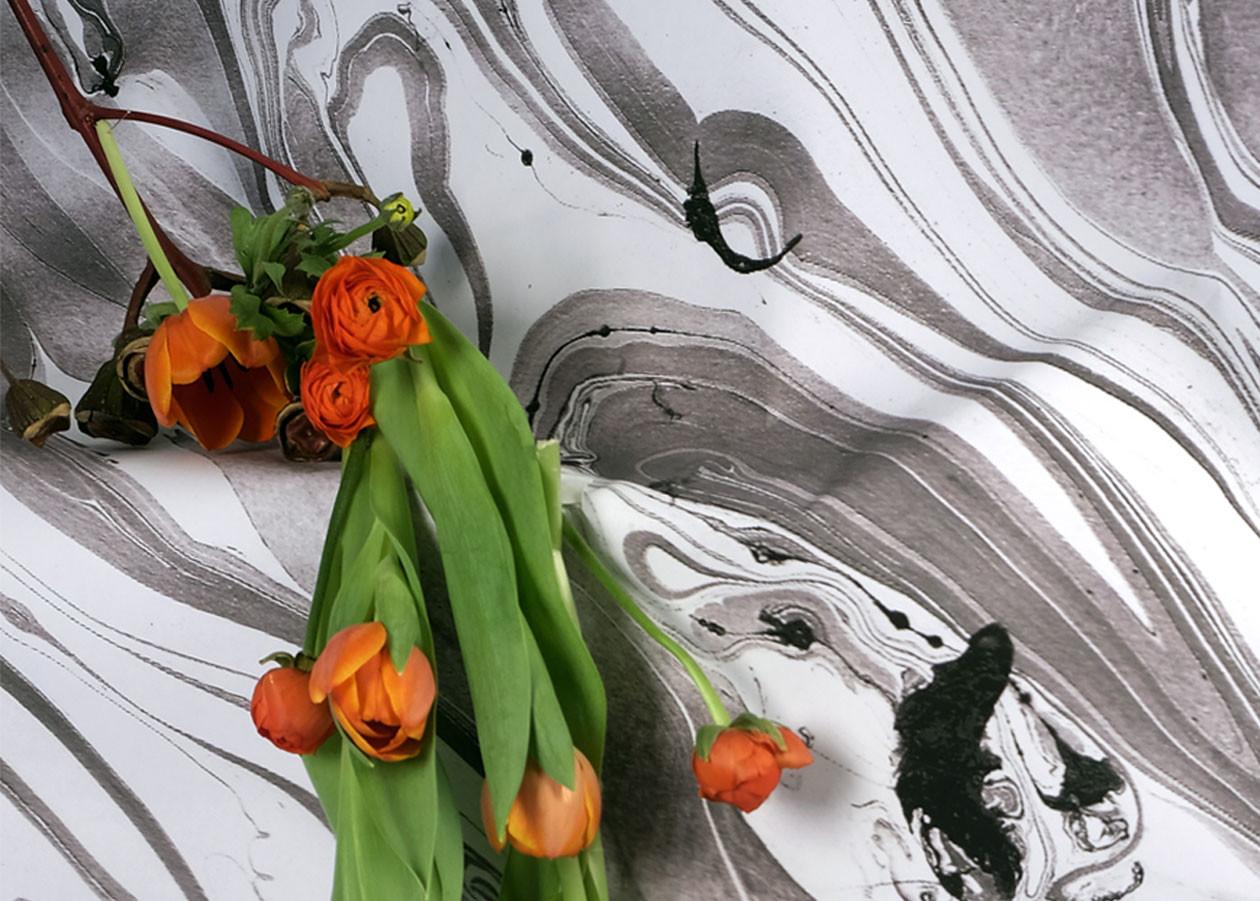 Tulipa - © Bigtime.
